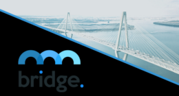 Bridge Mutual Partners With Plasma Finance For Decentralized Insurance On Blockchain