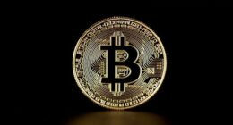 Bitcoin Price Rejects Key Support - What You Should Watch Next
